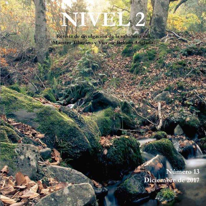Revista NIVEL 2 Revista de divulgación de la sabiduría del Maestro Tibetano (Djwhal Khul) y Vicente Beltrán Anglada Número 13